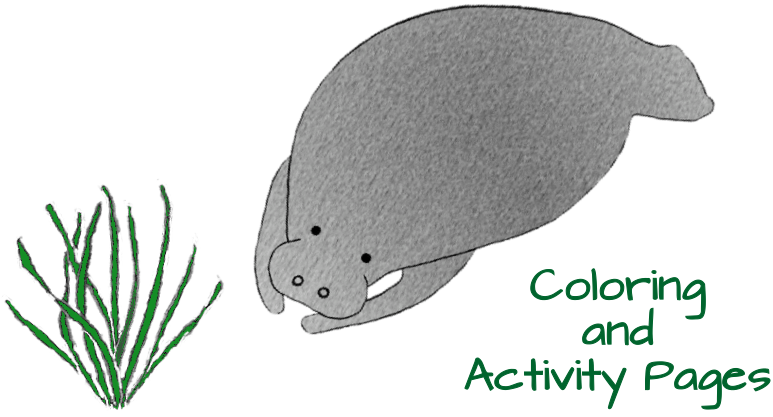 Coloring and Activity Pages Clear Copyright Laura K. Zimmermann