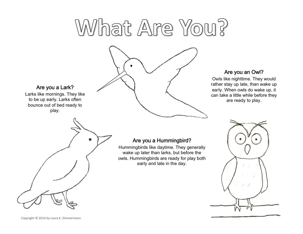 What Kind of Bird Are You? Coloring Page copyright Laura K. Zimmermann